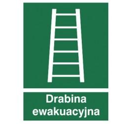 Znak drabina ewakuacyjna (118)