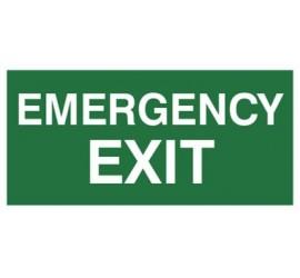 Znak EMERGENCY EXIT (806)