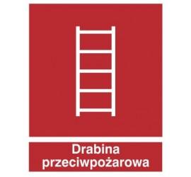 Znak drabina pożarowa (213)