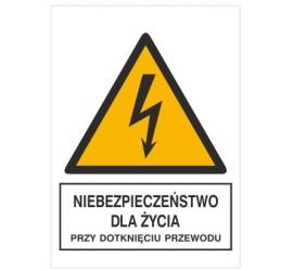 Znak niebezpieczeństwo dla życia przy dotknięciu przewodu (330-06)