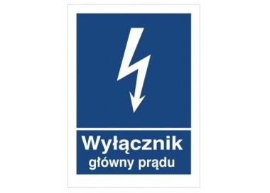 Znak wyłącznik główny prądu (530-29)