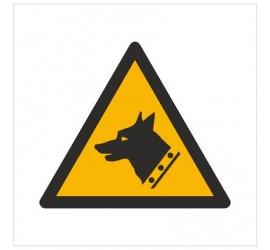 Znak ostrzeżenie przed złym psem (W13)